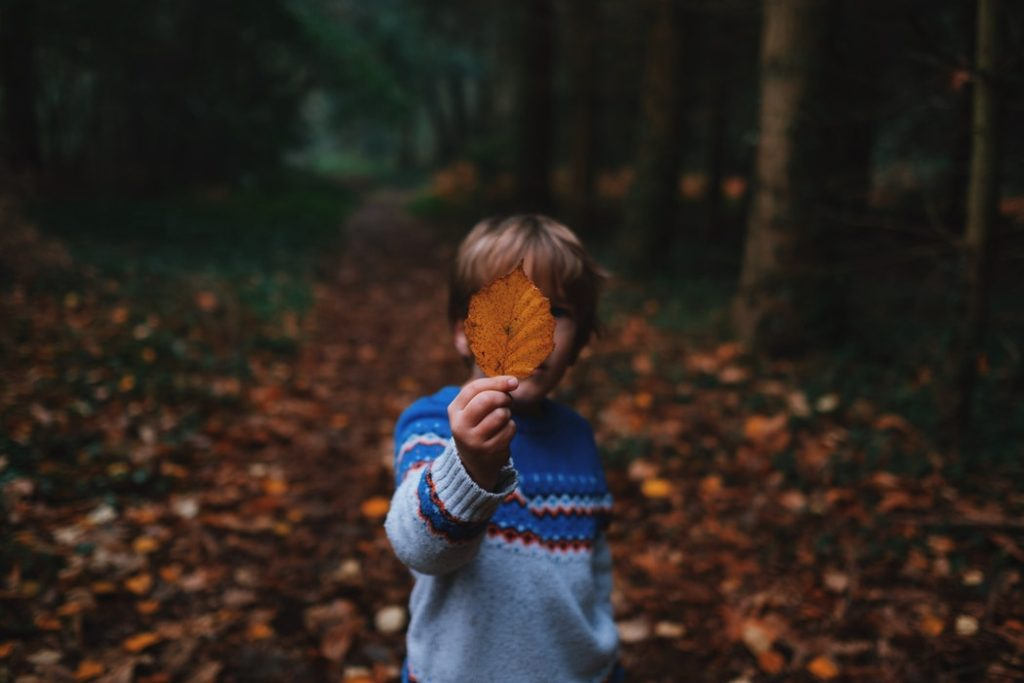 Engaging Children with Nature Through Gamification